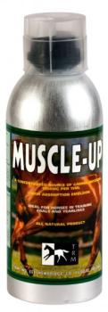 Muscle Up - TRM Ireland